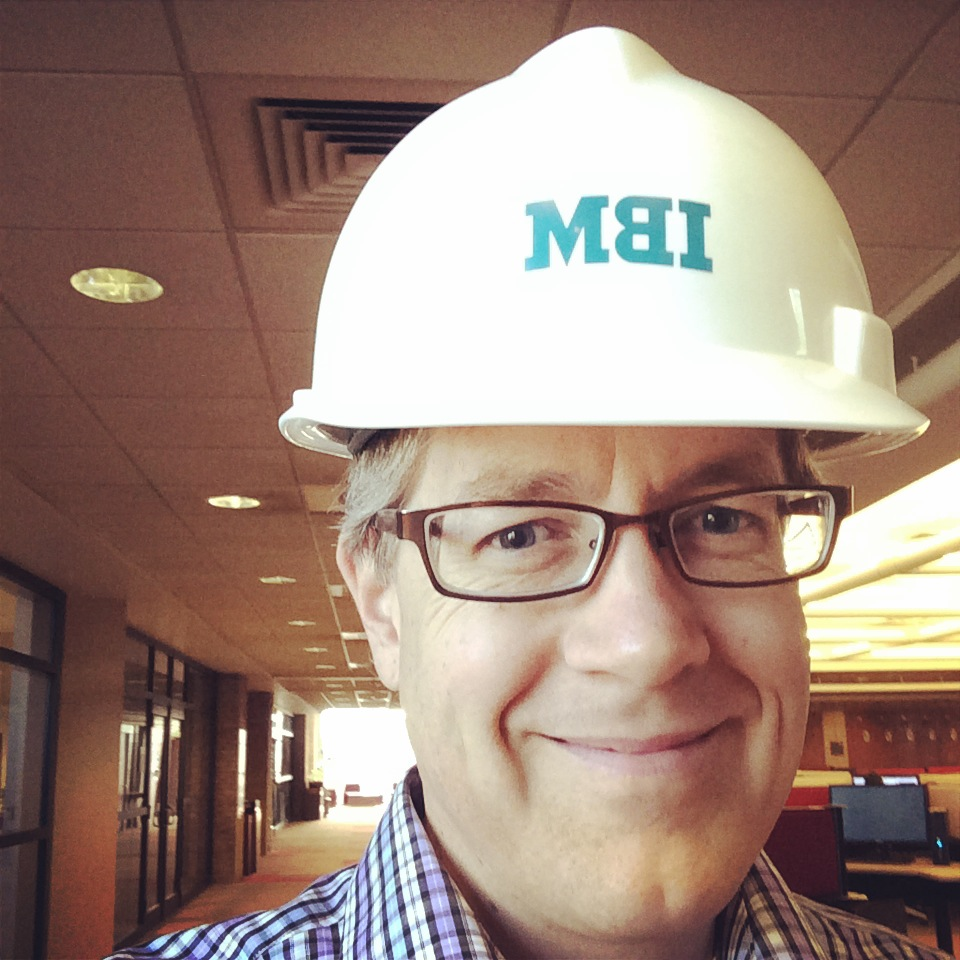Me wearing an IBM hardhat.